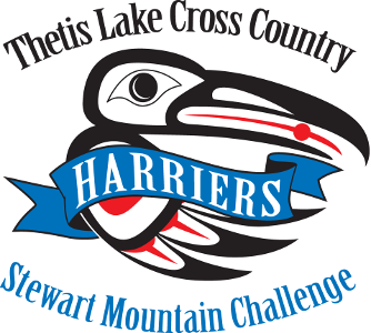 Logo for the Stewart Mountain Challenge race. Native Art Motif