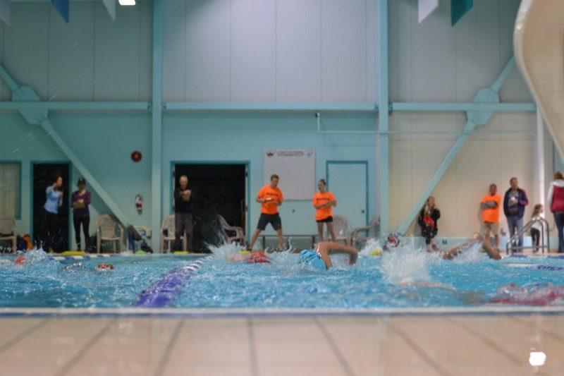 Swim begins at the Youth Triathlon Westshore