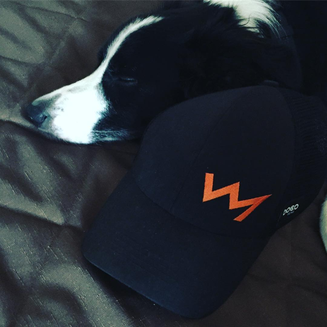 The head of a black and white sleeping border collie on a grey duvet and a black HPR cap with the logo on it, which is an orange line in the shape of a mountain range silhouette.