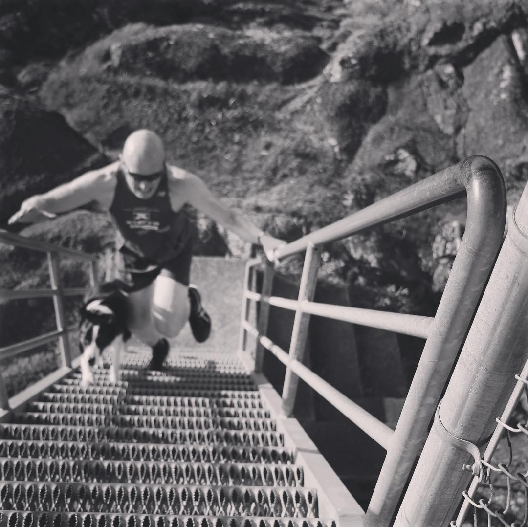 A black and white photo taken from the top of a set of outdoor metal stairs. A man in a swim cap is racing up them with a black and white boarder collie running up on his right.