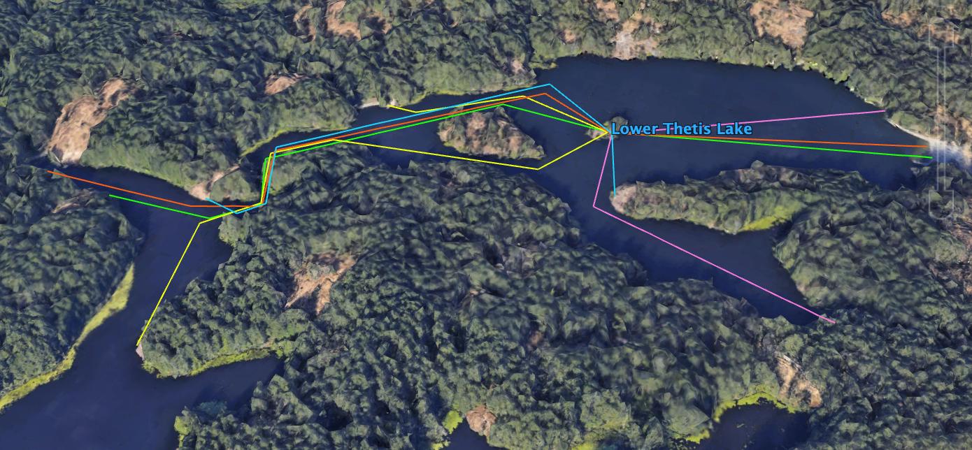 A colour map of the SwimRun Victoria Swim courses