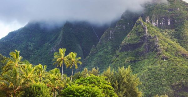 The rain clouds of the Big Island of Hawaii shroud the mountains and forests.